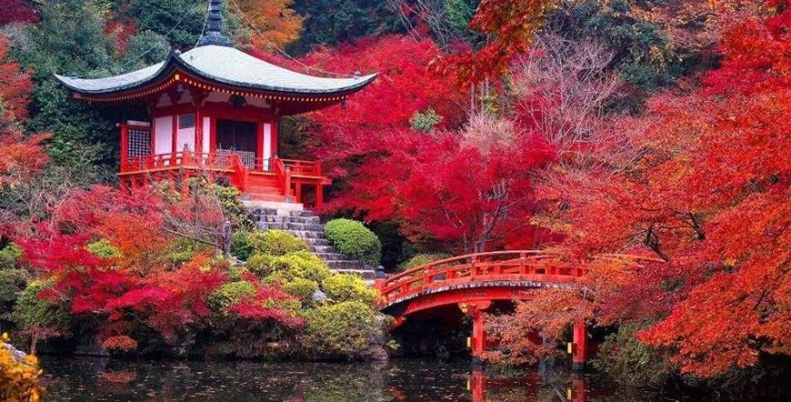 Sıradışı Kıtalar İşbirliği İle Japonya